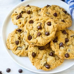 Flourless Peanut Butter Chocolate Chip Protein Cookies