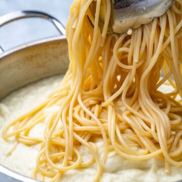 spaghetti being added over alfredo sauce in pan
