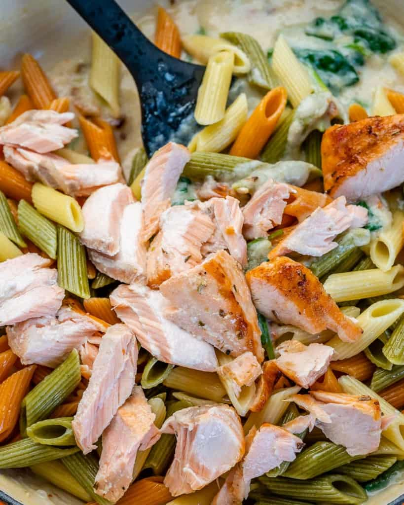 Cooked salmon morsels added over creamy pasta
