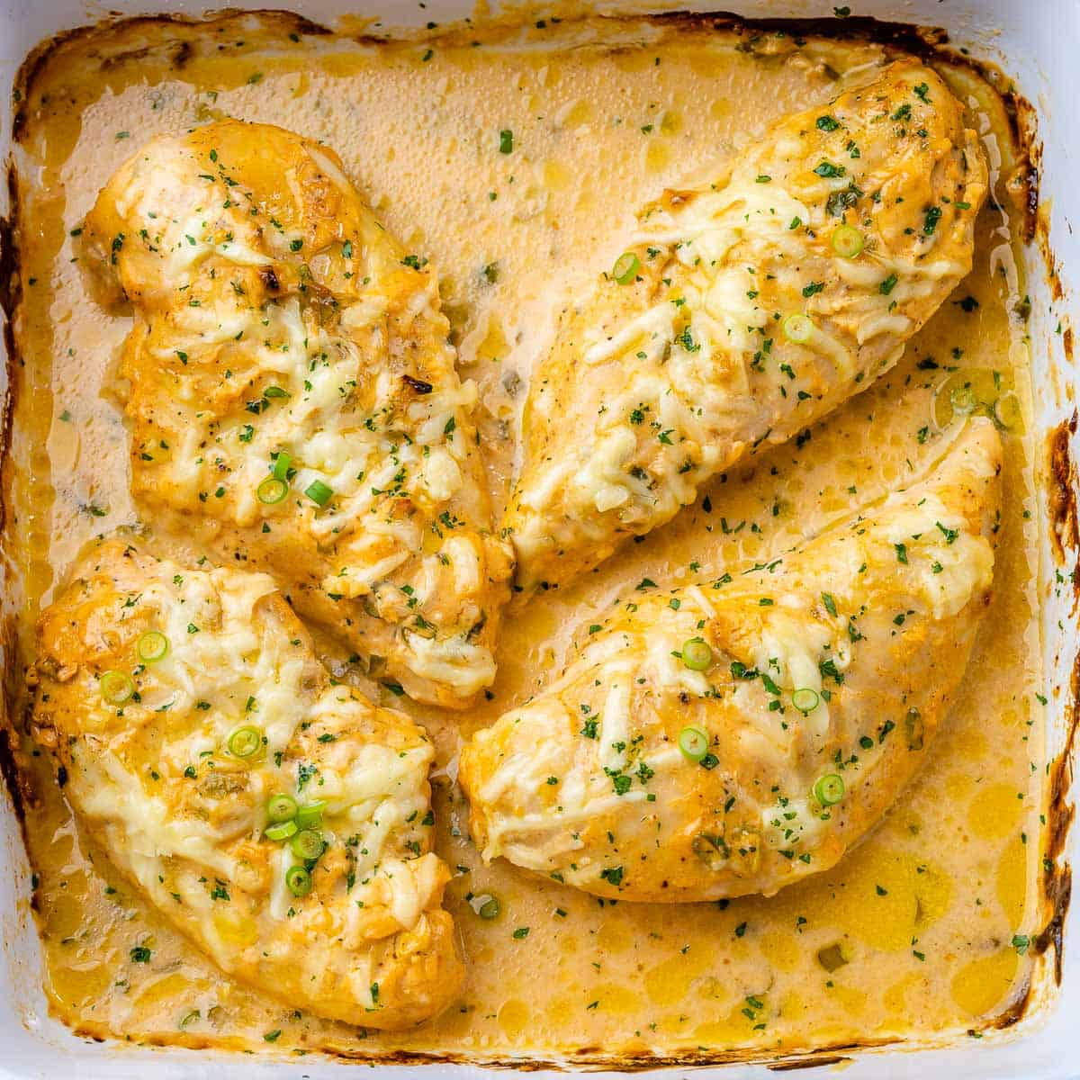 top view of baked buffali chicken breasts in a white dish